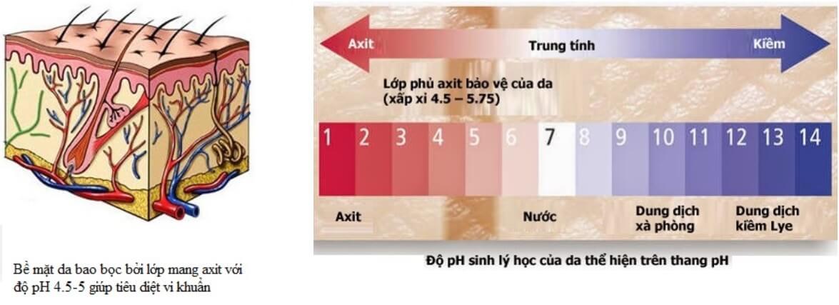 Căn cứ vào độ pH để lựa chọn sữa rửa mặt