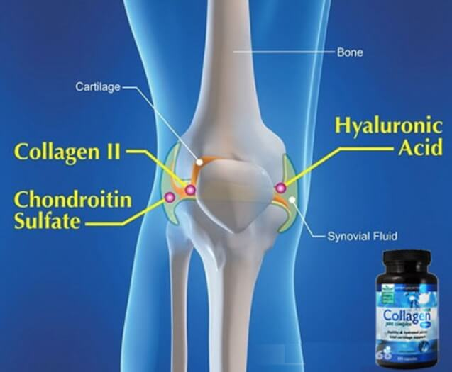 Collagen type II phòng và tránh thoái hóa khớp rất tốt