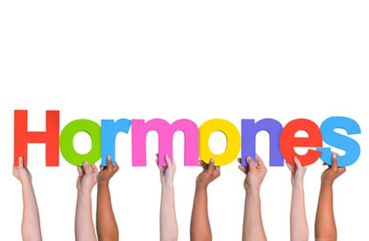 Kẽm giúp cân bằng lượng hormones trong cơ thể